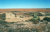 Picture relating to Sturt National Park - titled 'Sturt National Park'