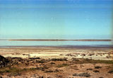 Picture of / about 'Lake Boga' Victoria - Lake Boga