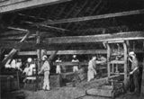 Picture relating to Cootharaba - titled 'Inside the timber mill at Cootharaba, Queensland'