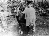 Picture of / about 'Irvinebank' Queensland - Billy Sheppard and his goat, Brownie