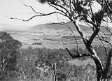Picture relating to Braddon - titled 'Braddon, Civic Centre, Hotel Ainslie from Mount Ainslie.'